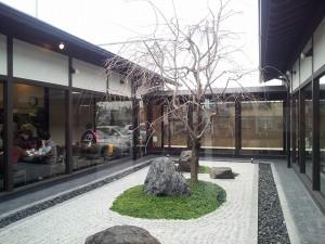 桜珈琲 桜の木